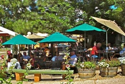 Pet friendly restaurant in Taos, New Mexico: Bent Street Cafe and Deli